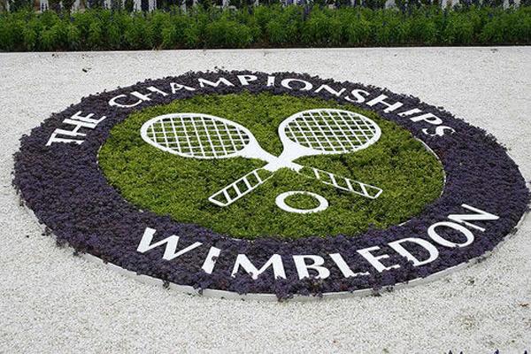 Disfruta del mejor tenis con la app oficial de Wimbledon para IOS y Android