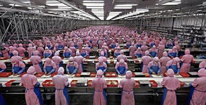 trabajadores-foxconn