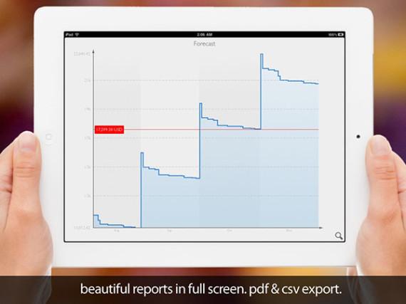 MoneyWiz-Grafica