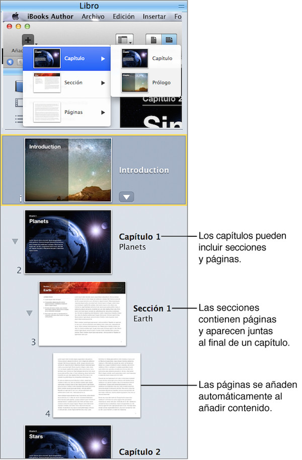 foto3,columna