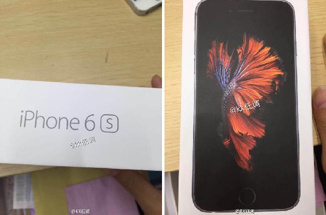 caja_iPhone6s1