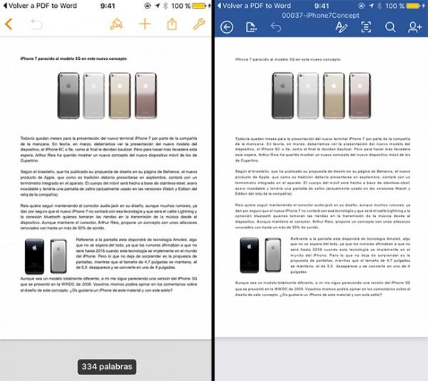 PDF a WORD 10