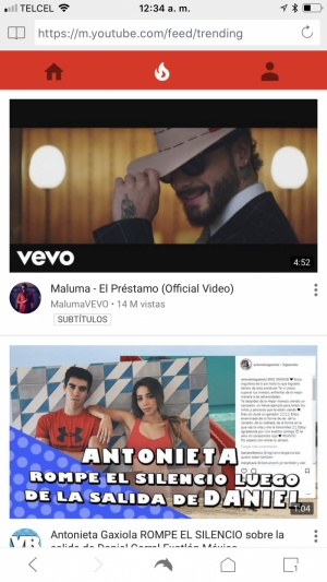 YouTube en Dolphin