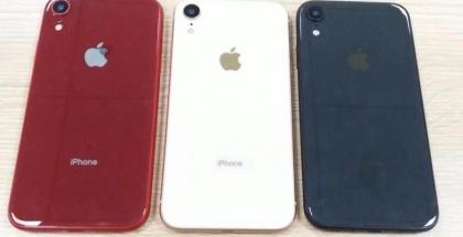 El iPhone de 6.1 pulgadas