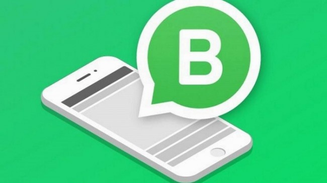 WhatsApp Business para iOS