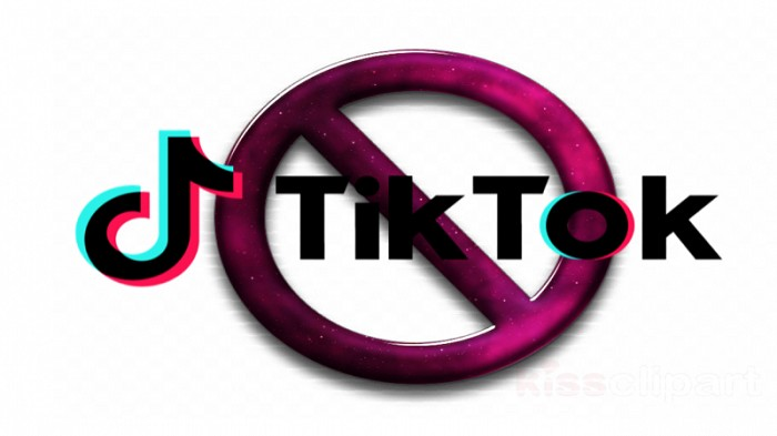 Peligro TikTok